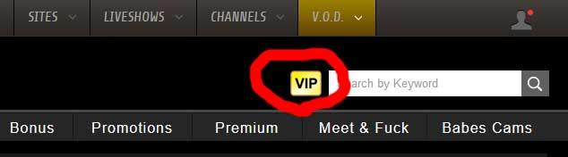 VIPプラン