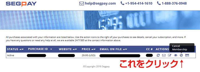 Segpay 登録状況確認ページ