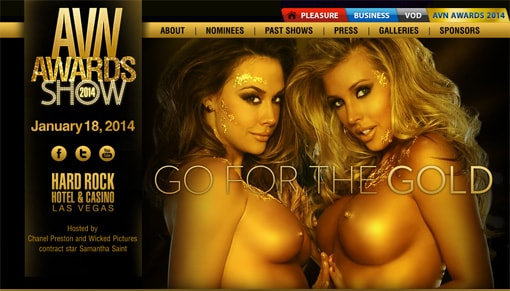 AVN Awards 2014