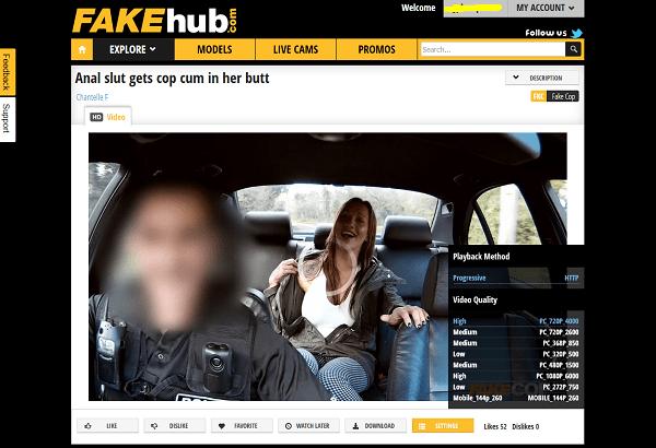 Fake Hub動画フォーマット