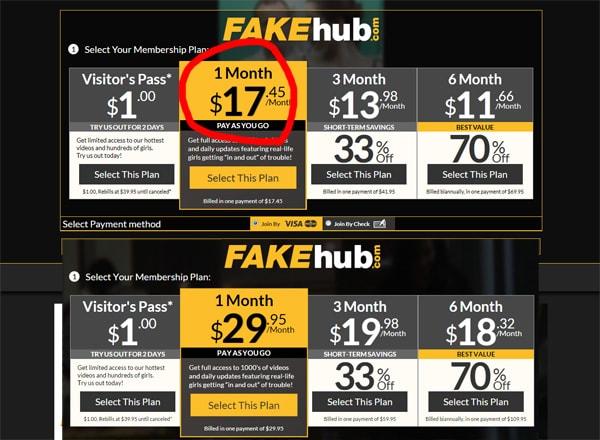 Fake Hub 料金設定