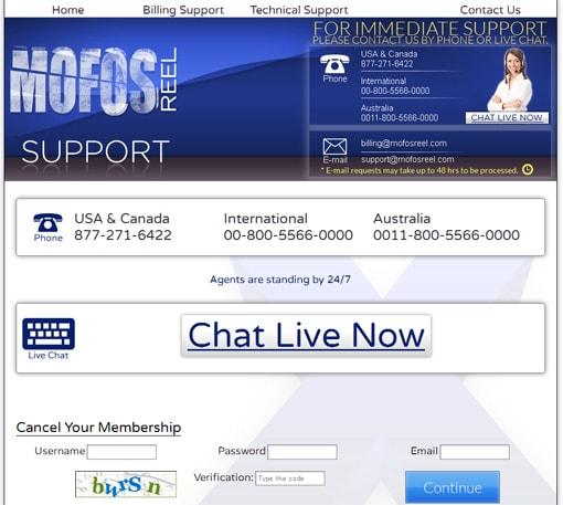 MofosReelサポートページ