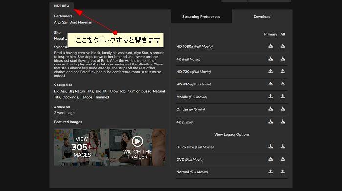 Naughty America動画ダウンロードオプション