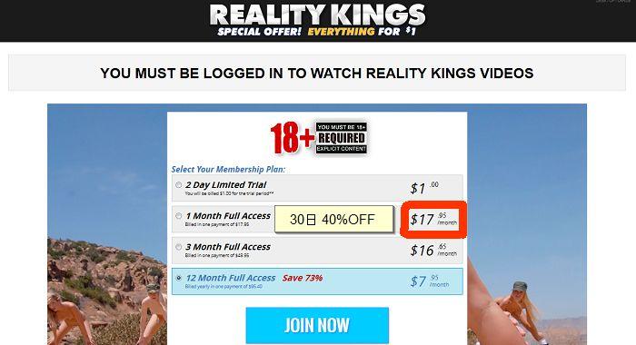 Reality Kings プラン選択